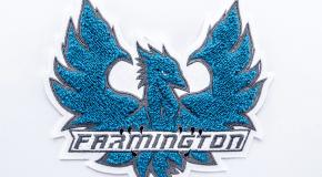 Farmington-Phoenix-Chenille-Coleman-2018-4731