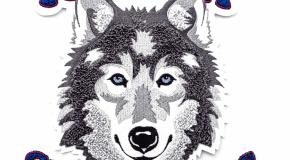 Fremont-Silverwolves-Chenille-Coleman-2018-4989