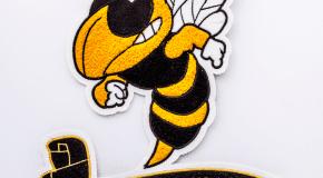 Wasatch-Wasps-Chenille-Coleman-2018-5053