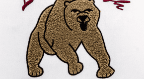 Logan-Grizzlies-Chenille-Coleman-2018-5103
