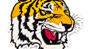 Ogden-Tiger-Chenille-Coleman-2018-4912